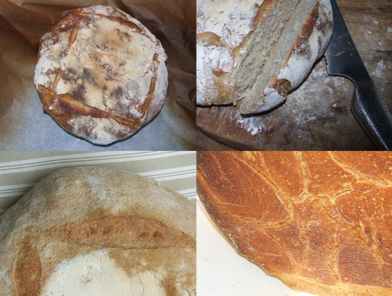 Galería de pan, distintos tipos