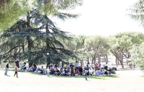 tribu de madres en un picnic