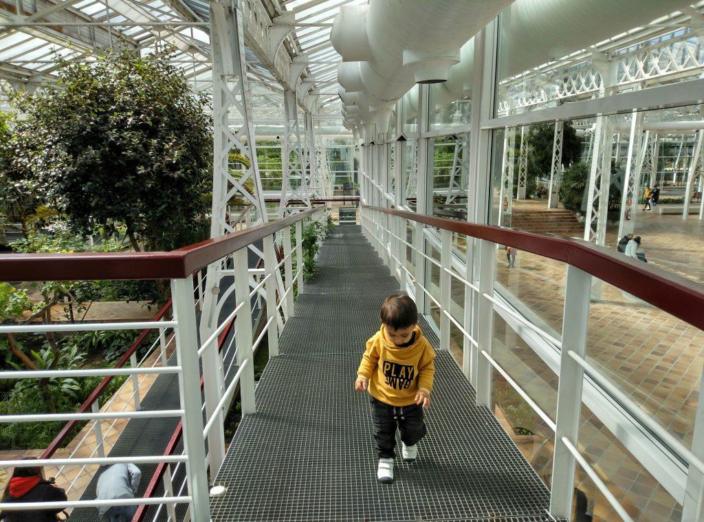 Planes con niños. Palacio de Cristal. Rampa