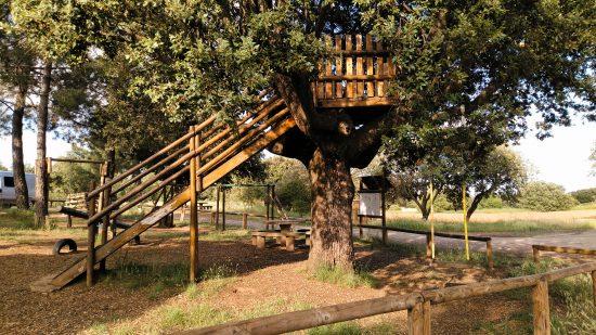 Casita en el árbol de El Carrascal